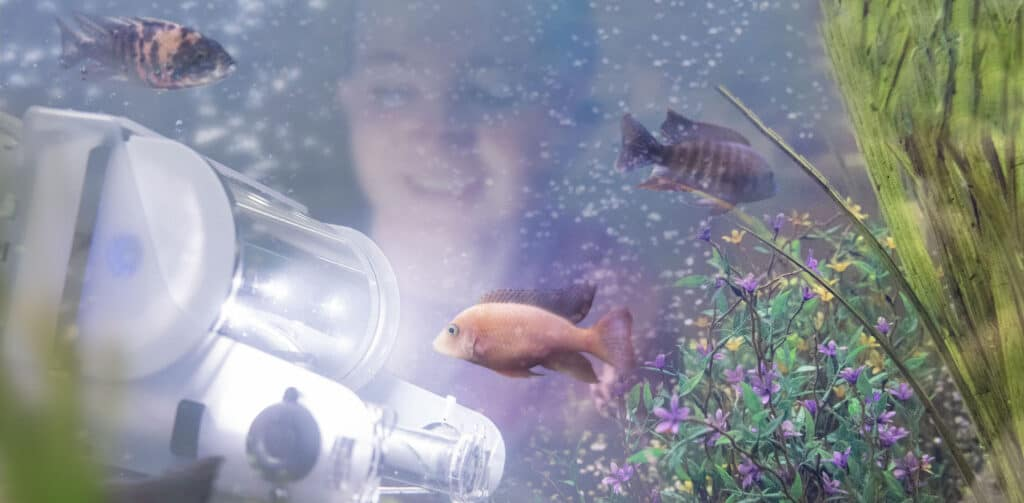Student interacting with an underwater robot with fish swimming around it