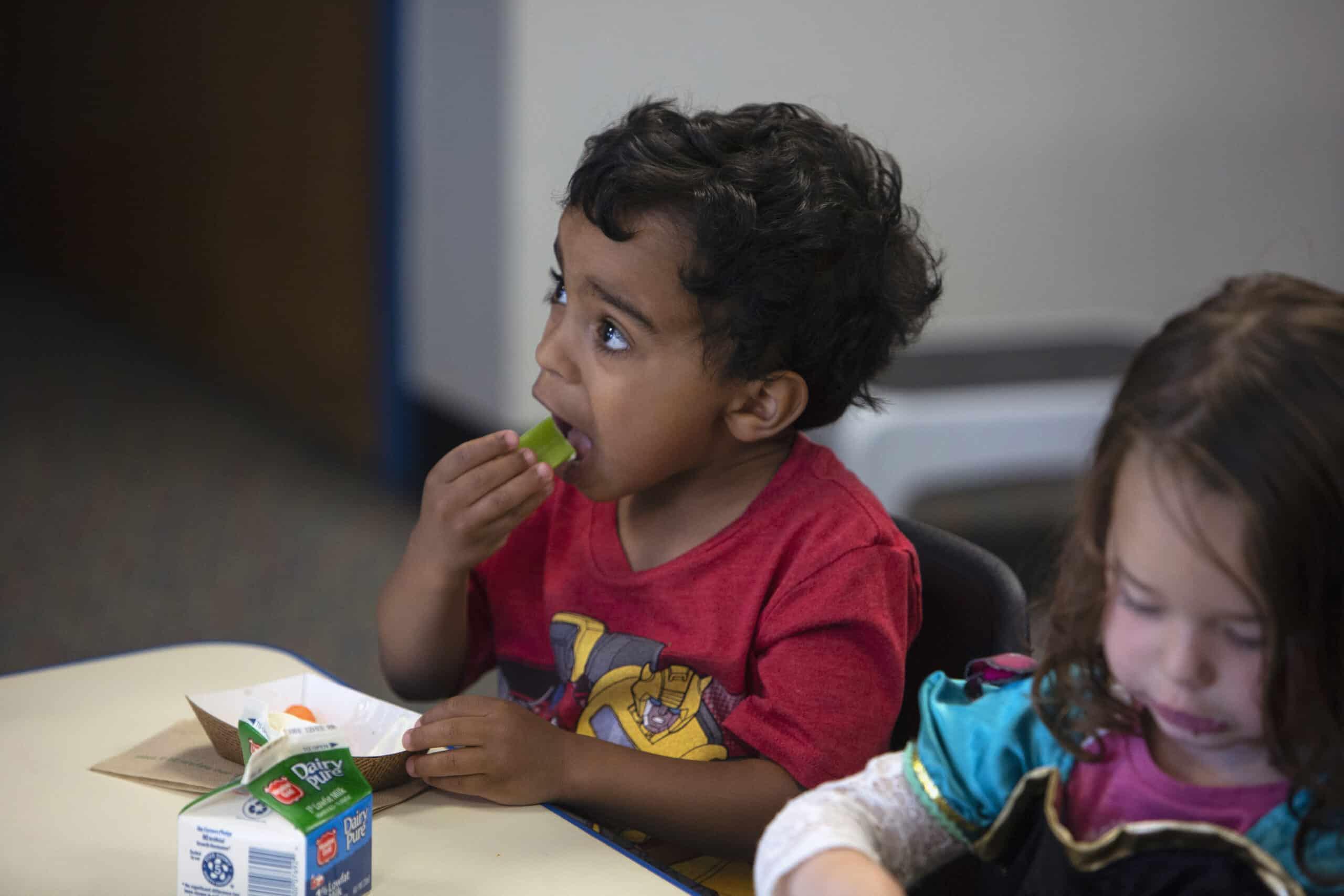Preschool aged boy eating celery